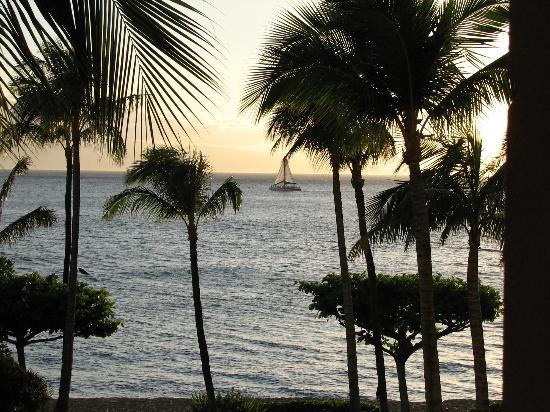 Marriott's Maui Ocean Club  - Lahaina & Napili Towers: You'll see many sunset cruises