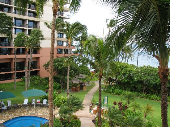 Marriott's Maui Ocean Club  - Lahaina & Napili Towers: Nice view of main resort and palm trees