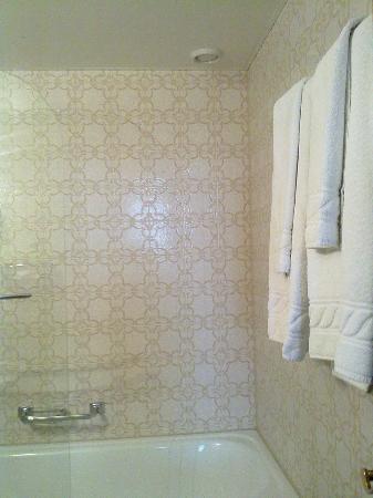 Hotel Ambassador: Baño