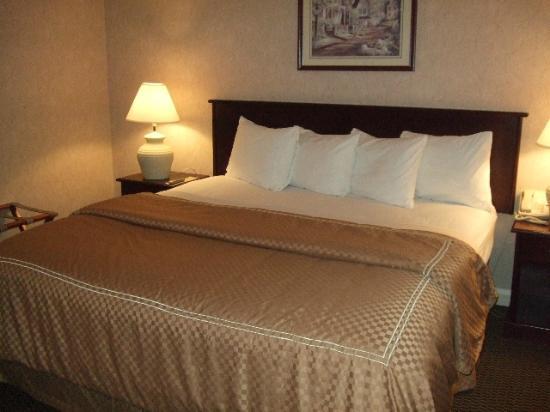 Mt Madison Inn & Suites: Comfy King Bed