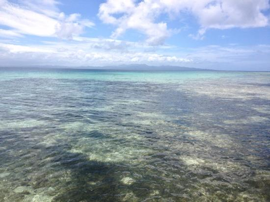Leleuvia Island Resort: clear sea water