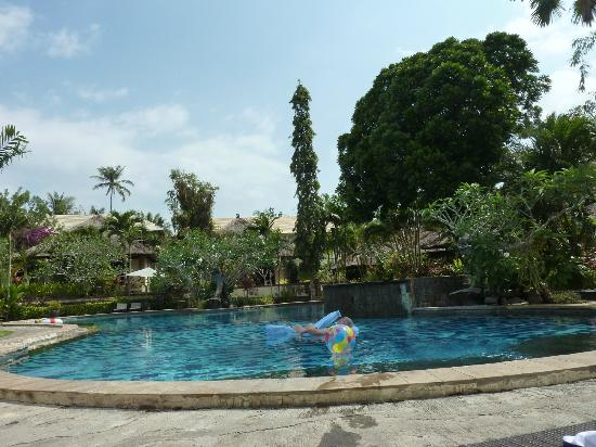 Medewi Bay Retreat: Pool and surrounding gardens