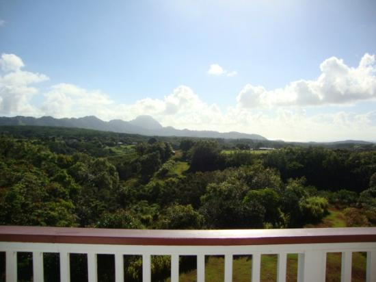 Kauai Banyan Inn: View from the balcony