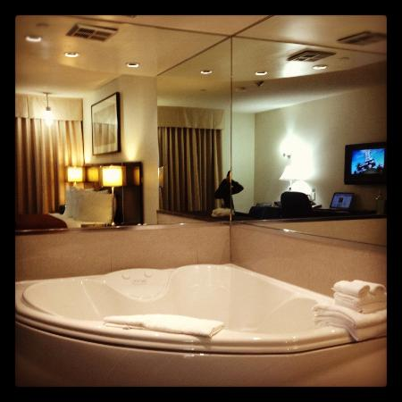 Quality Hotel Burlington: Jacuzzi Suite, November 2012
