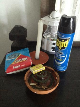 COCOS Hotel Antigua: bug fighting aids
