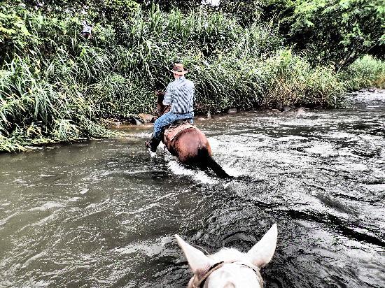 Centaura- Day Horseback Riding Tours