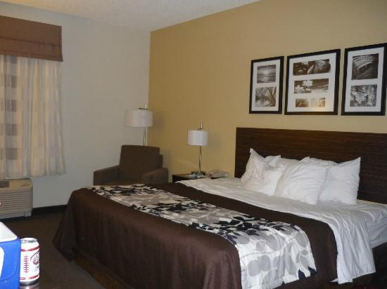 Sleep Inn & Suites and Indoor Water Park : Standard King