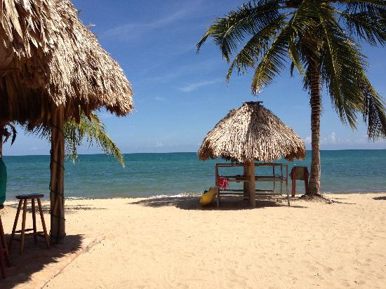 Belizean Dreams: the bar
