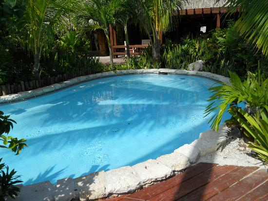 Ramon's Village Resort: Pool
