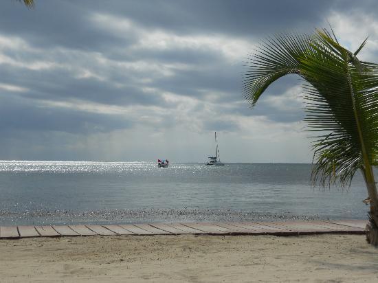 Ramon's Village Resort照片