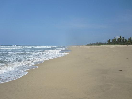 Playa Viva: A beach to yourself