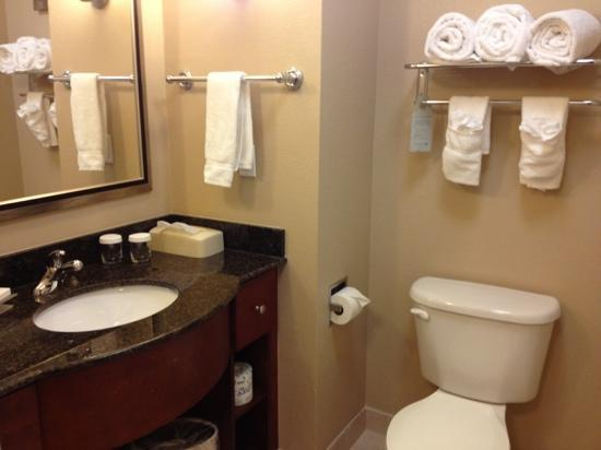 Homewood Suites by Hilton Boston/Andover: sink and toilet, well-lit