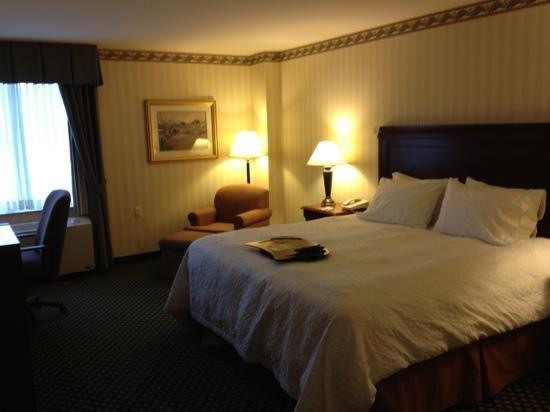 Hampton Inn Littleton : bed, desk, couch