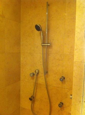 Z Ocean Hotel South Beach : shower