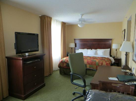 Homewood Suites by Hilton Tampa Airport - Westshore: Comfy Bed