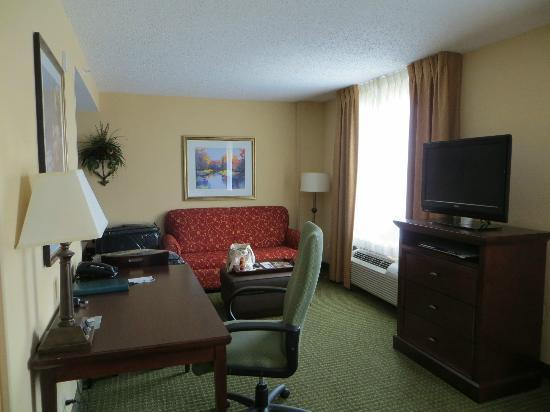 Homewood Suites Tampa Airport - Westshore: Living Area - 1 King Bed Studio