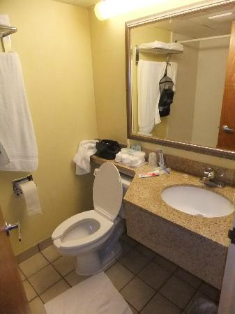Holiday Inn Express Boston: Very small bathroom but clean.