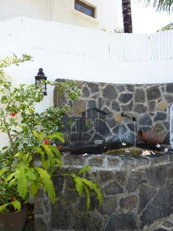 La Maison D'ete Hotel: fontaine