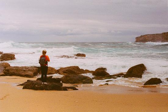 Sydney Coast Walks - Day Walks: wild ocean after a rainy day