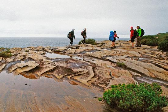 Sydney Coast Walks - Day Walks: The coast track