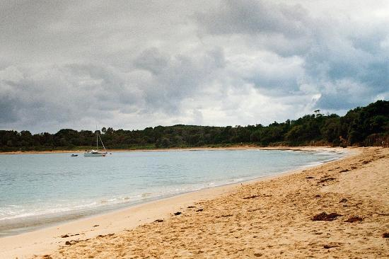 Sydney Coast Walks: Jibbon Beach, Bundeena