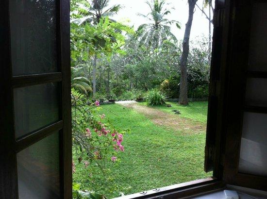 Southern Province, Sri Lanka: Templeberg Plantation, Galle