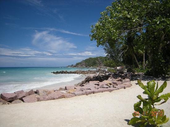 Islander Hotel: plage de l'hotel 