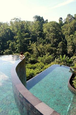 Hanging Gardens of Bali: Pool