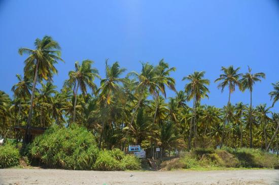 Ashwem Beach North Goa @ Leela Cottages