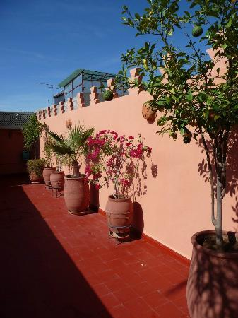 Riad Dar Shana: la terrasse