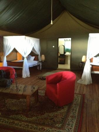 Ngorongoro Wildcamp: Barraca Twiga
