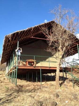 Ngorongoro Wildcamp: barraca Twiga
