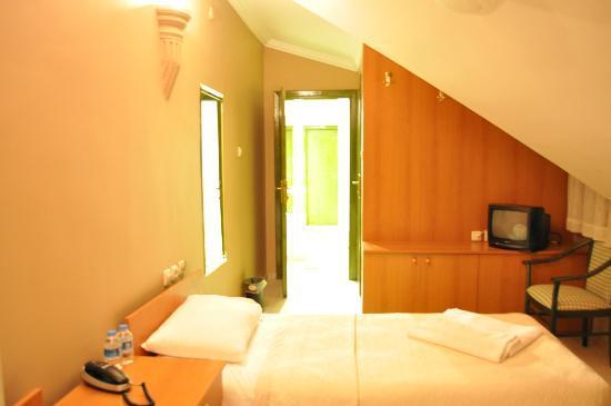 Kartaltepe Boutique Hotel: roof room 203