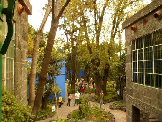 Musée Frida Kahlo : patio