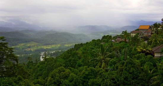 Aditya Homestay: view in the rain