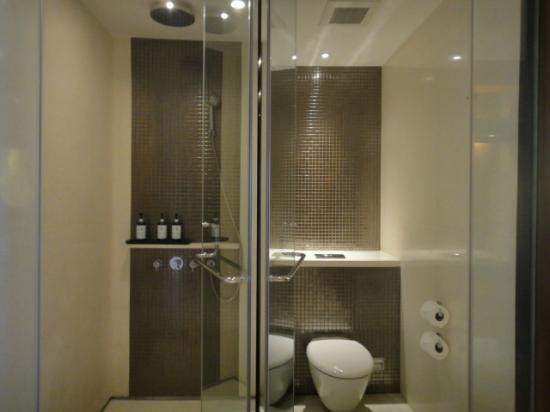 Hansar Bangkok: shower/toilet