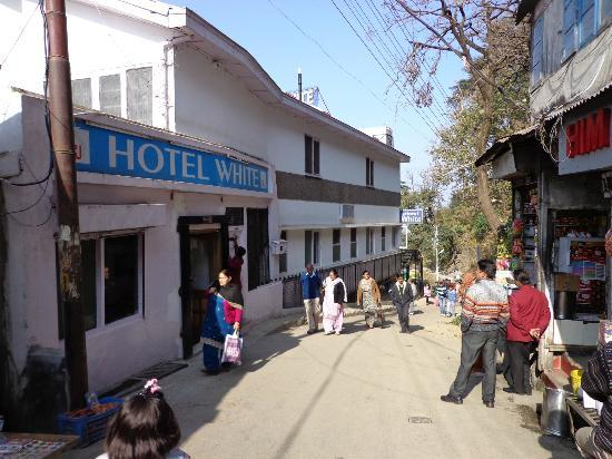 Hotel White: Hotel front