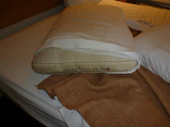 Regency Inn: pillow
