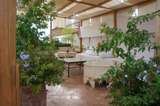 Riad Le Coq Berbere: Terrace