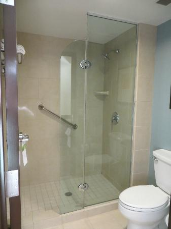 Hyatt Place Sarasota / Bradenton Airport: Modern Bathroom