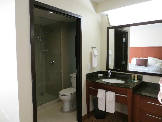 Hyatt Place Sarasota / Bradenton Airport: Separate Vanity Area