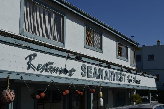 Sea Harvest Fish Market & Restaurant : Sea Harvest Restaurant