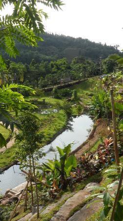 Thuleefa Resort: ลำธารน้ำแร่ จากต้นน้ำที่ก่อกำเนิดในพื้นที่รีสอร์ท