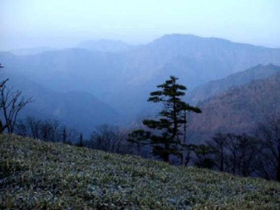 Ominesanji Temple: 頂上から弥山を見る