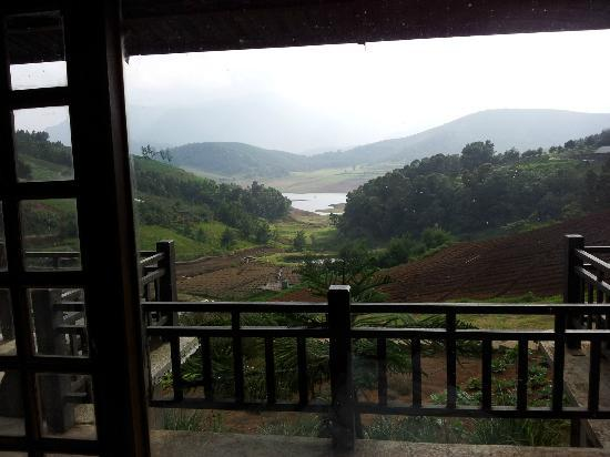 Destiny Farmstay: View of the farm and estate from outside one of the rooms
