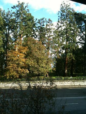 Eden Hotel Geneva: Parc