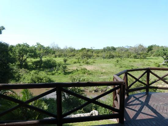 Lukimbi Safari Lodge: View from the deck