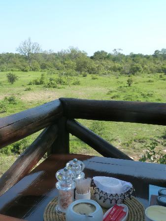 Lukimbi Safari Lodge: View during breakfast