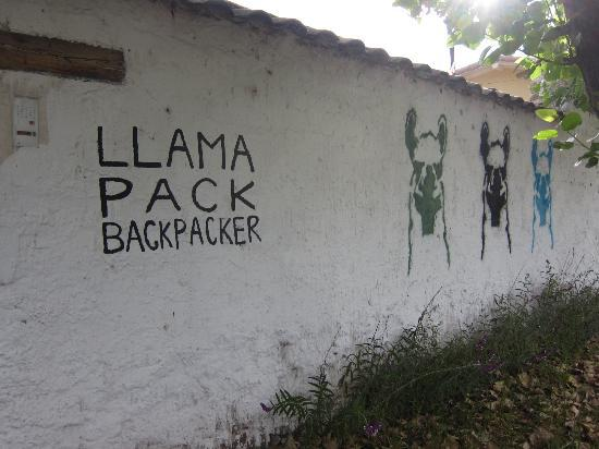 Just outside Llama Pack Backpacker