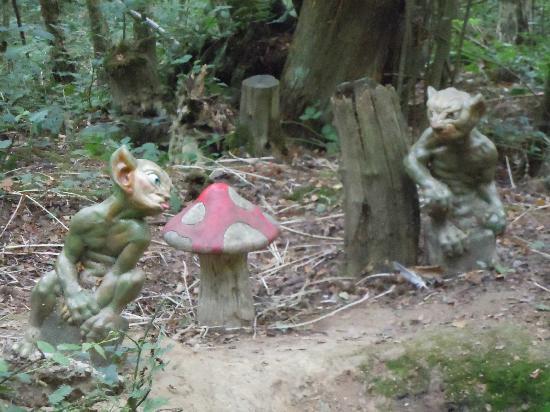 Druidstone Park: Goblins hiding on the woodland walk